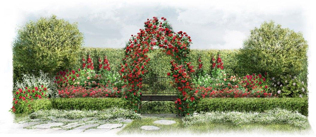 Wygląd ogrodu w stylu angielskim