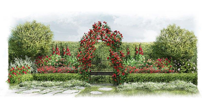 Projekt ogrodu w stylu angielskim: Anglia różana - wizualizacja
