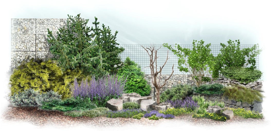 Wygląd ogrodu w stylu skandynawskim