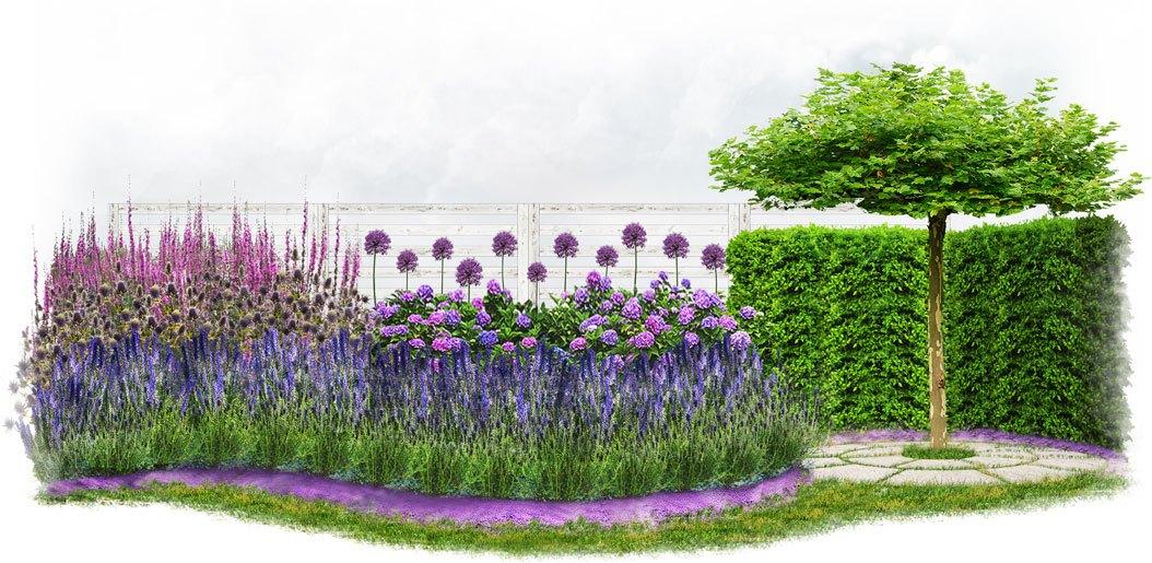 Wygląd ogrodu w stylu francuskim - prowansalskim